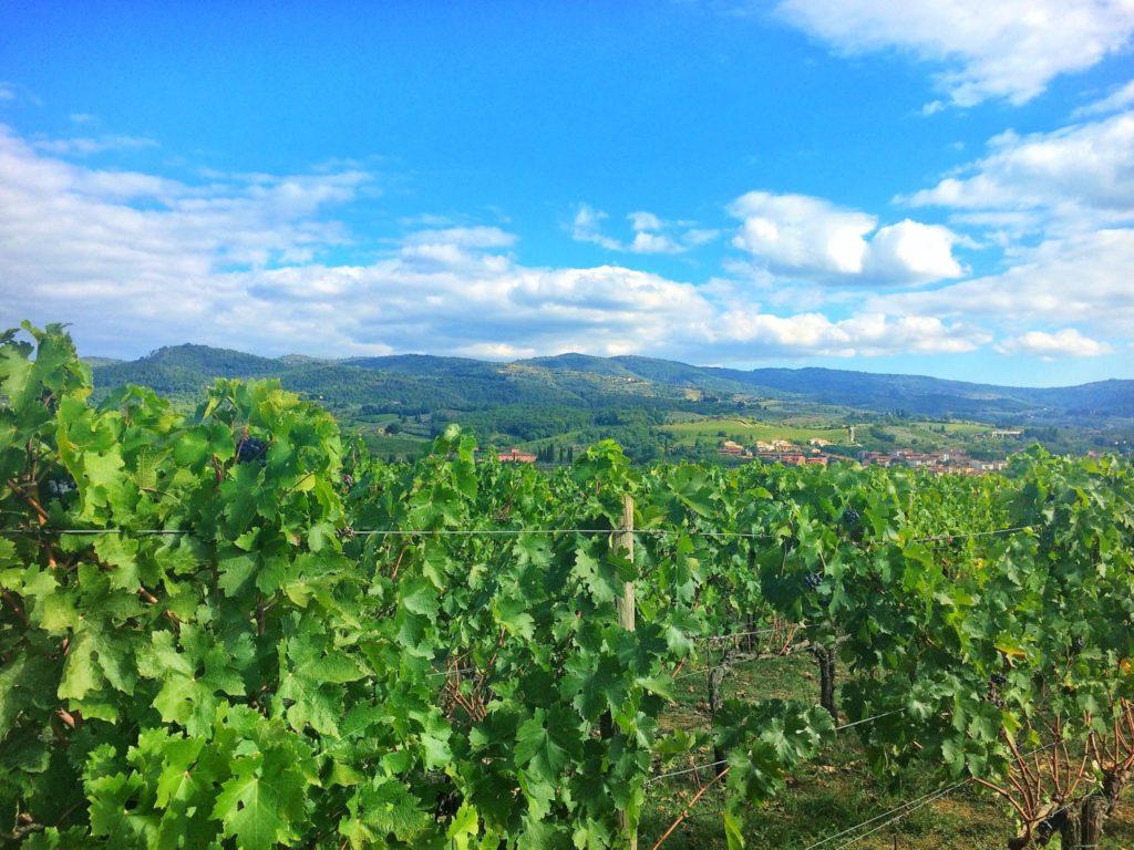 Chianti, Tuscany, Italy road trip